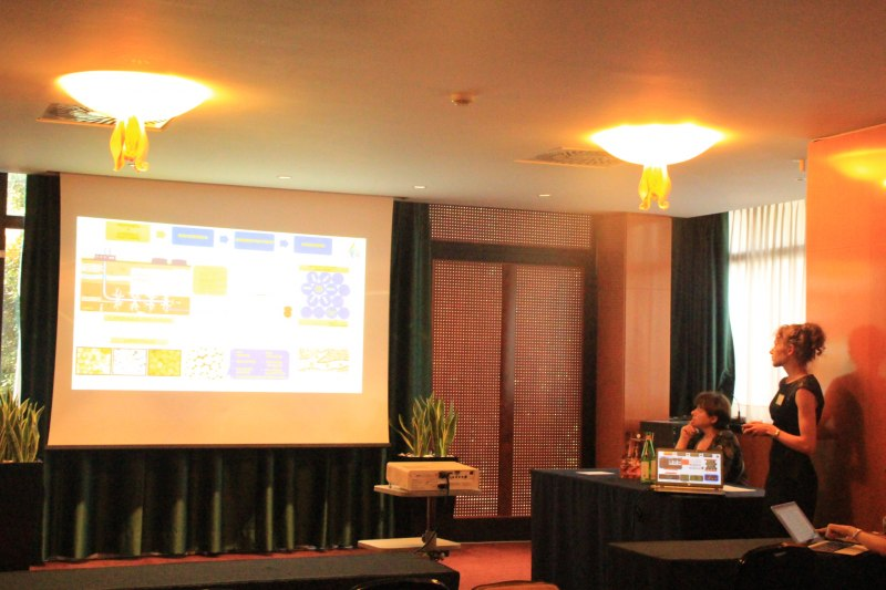Photos of Advances in Hydrogen Storage Materials Research and Hydrides with High Gravimetric Capacity in Rome #32